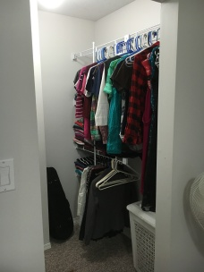 Closet organizer still held off, even after adding clothes.