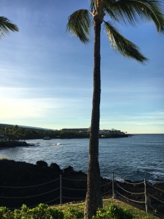 View from the lanai off our condo.